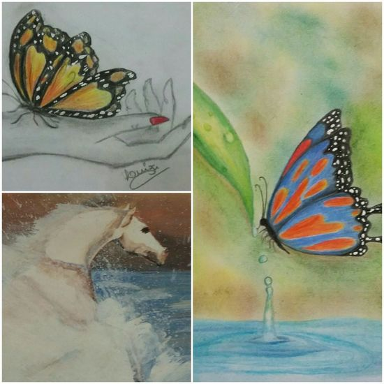 Collage Multi Colored Butterfly - Insect Drawing - Art Product Meu Desenho <3 Minha Arte