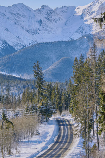 Snow covered road amidst trees and mountains