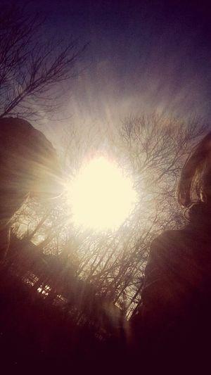 Sunlight Selfie Having Fun Walkingthedog Enjoying The Sun