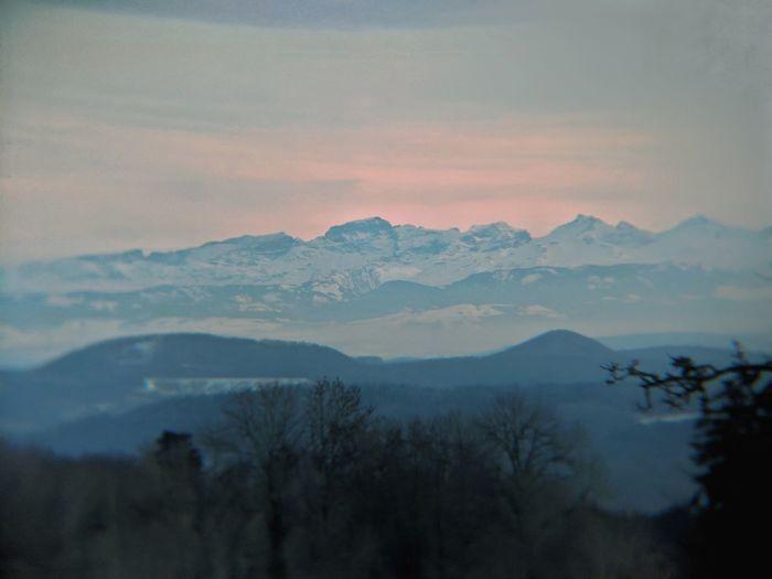 Alps Switzerland Alps Mountain Tree Fog Winter Forest Sky Landscape Mountain Range Sunrise - Dawn Atmospheric Mood Tree Area Romantic Sky Dramatic Landscape Dawn Mountain Peak