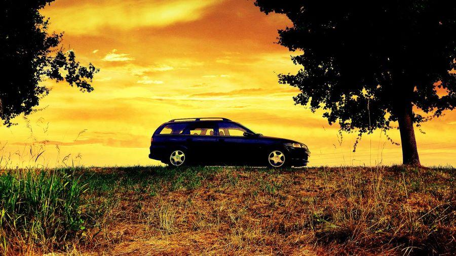 Old but Gold Opel Opel Vectra B Caravan Stationwagon Germany Lovemycar