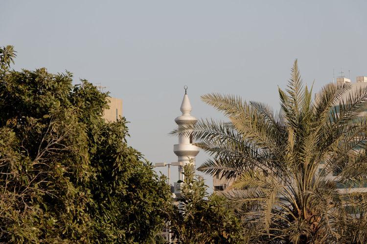Architecture Day Nature No People Outdoors Religion Sky Tree Minerat Religious  Religious Architecture Religion And Tradition Abu Dhabi Uae,abudhabi