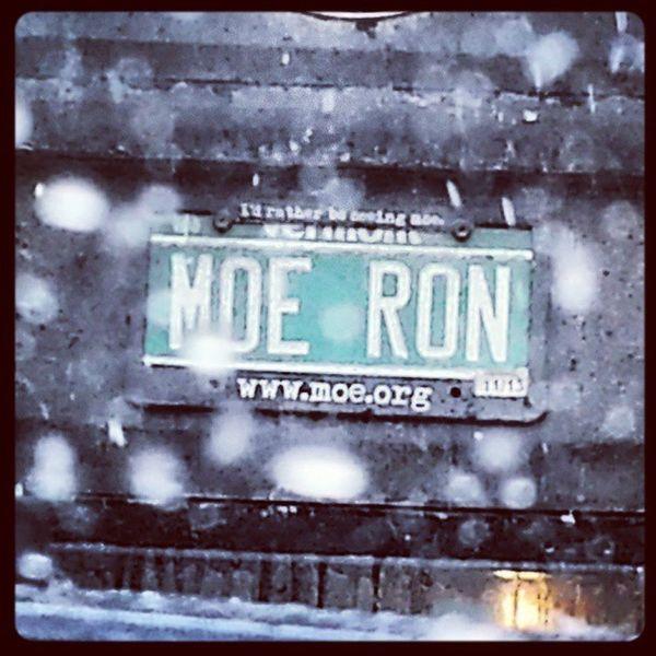 Moeron Moe Snowdown