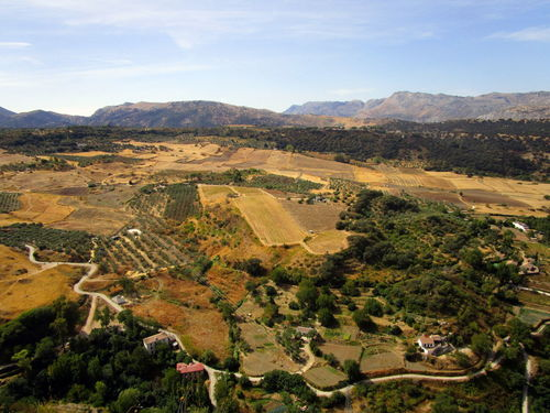 Aerial View Agriculture Andalucía Beauty In Nature Countryside Field Landscape Mountain Nature No People Outdoors Panorama Panoramic Panoramic Photography Panoramic View Patchwork Landscape Ronda Rural Scene Scenics SPAIN Tranquil Scene Tranquility Tree