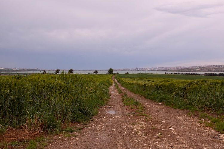 Road amidst grassy field against sky