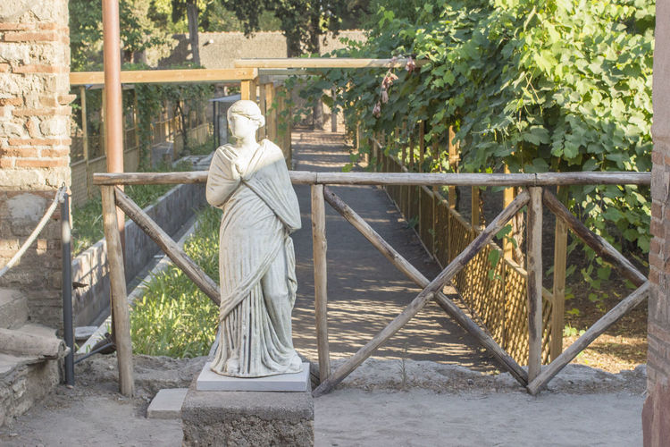 Rear view of statue against trees