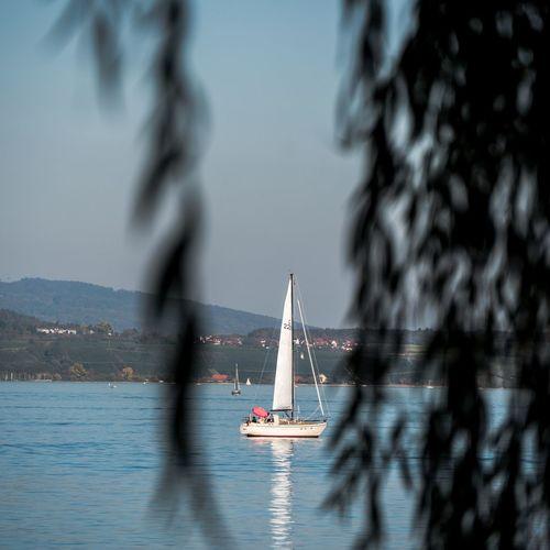 Sailing See Bodensee Paparazzi Lumix GX8 Nautical Vessel City Tall Ship Politics And Government Sailing Ship Yacht