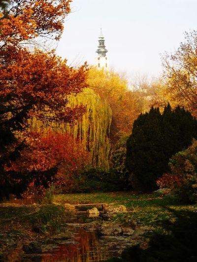 Nitra's castle