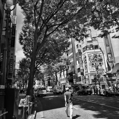 People Photography People On The Road CityWalk Crossing City Street Summer Summertime Snapshot Blackandwhite B&w Street Photography Streetphotography_bw Hot Day Sunshine at Shibuya 渋谷 , Tokyo Japan