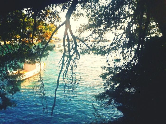 Summer Seaside Landscape Nature