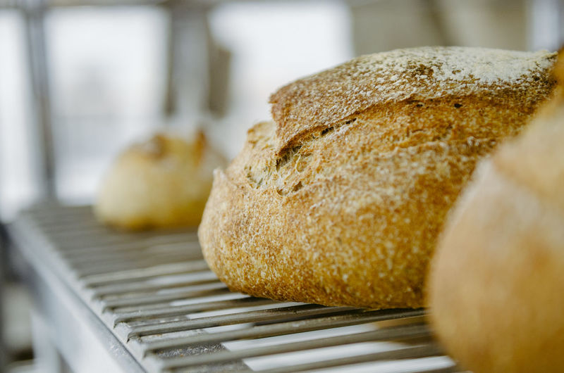 Food And Drink Food Bread Indoors  Close-up No People Freshness Selective Focus Appliance Loaf Of Bread Wellbeing Focus On Foreground Still Life Preparation  Baked Healthy Eating Music Musical Instrument Simplicity Day Dieting