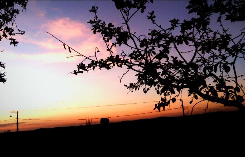 Natureza Urbana Fim De Tarde Fim De Semana Por Do Sol Blue Sky ❣ Lost In The Landscape Connected By Travel Perspectives On Nature