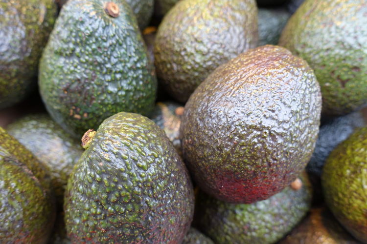 avocados Food Avocados Foodphotography Vegetables Healthy Foods Fruit Supermarket Close-up Food And Drink