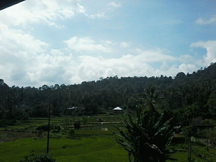 Homeeeeee Sweeet Homeeeeee INDONESIA Padang, Indonesia Westsumatera