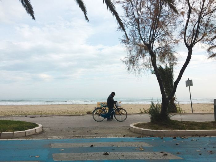winter beach Bicycle Water Sky Transportation Land Vehicle Tree Real People Mode Of Transportation Cloud - Sky One Person Nature Lifestyles Horizon Over Water Beach Sea