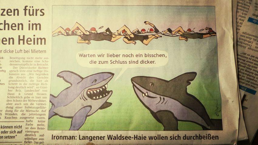 noch ein grund nachher nicht zu langsam zu schwimmen... Ironman Frankfurt Waldseehaie