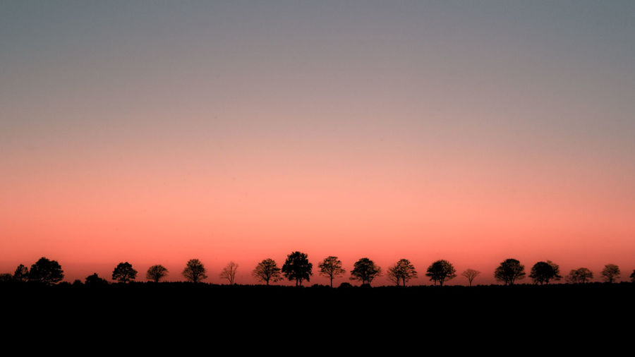 Sunset Nature Sky Landscape Tree Silhouette Day Outdoors Tranquility Agriculture Clear Sky California Dreamin Scenics Beauty In Nature No People Tranquil Scene Colour Your Horizn The Great Outdoors - 2018 EyeEm Awards The Street Photographer - 2018 EyeEm Awards Orange Color Copy Space Idyllic Field Growth