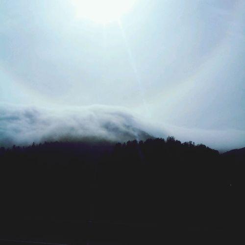 La niebla se quedó en la V Región.