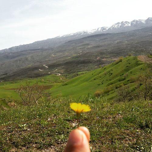Kurdistana_mn