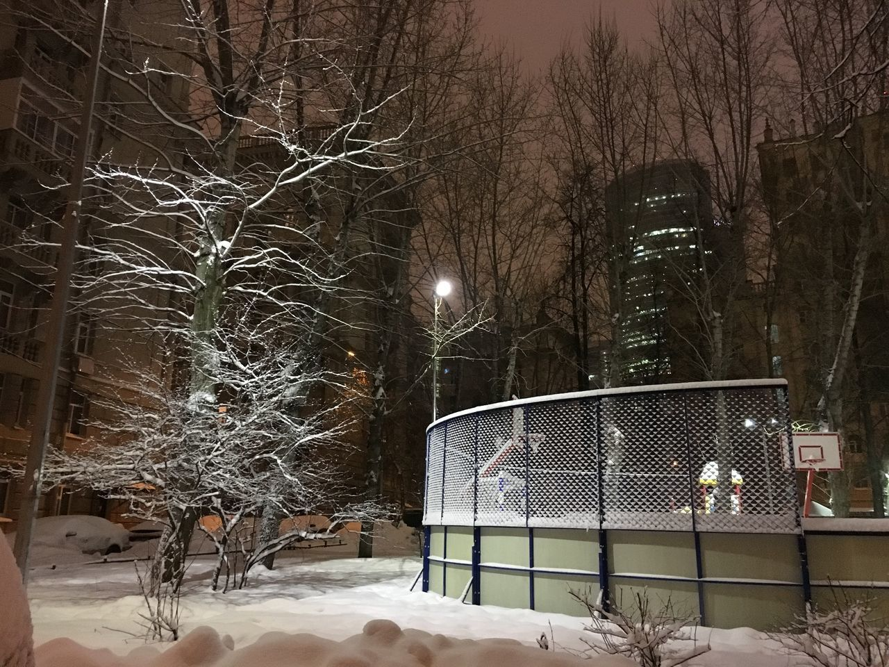 SNOW COVERED BARE TREES AGAINST ILLUMINATED BUILDING