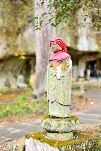 Old Jizo stone statue standing in Matsushima, Japan Japan Japan Photography Japanese  Japanese Culture Japanese Temple Jizo Statue Travel Photography Animal Themes Bird Buddhism Buddhist Temple Close-up Day Focus On Foreground Holy Jizobosatusu Jizou Matsushima Nature No People Outdoors Stone Statue Travel Destinations Tree