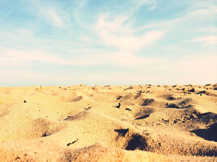 Surface level of sandy beach against sky