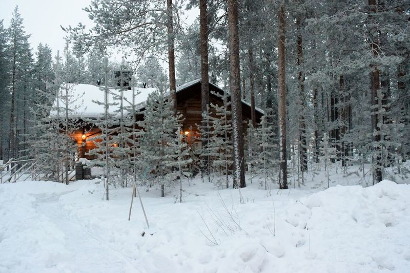 Beauty In Nature Cold Temperature Day Log Cabin Nature No People Outdoors Snow Snow On Tree Branches Snowing Tranquil Scene Tranquility Tree Weather Winter