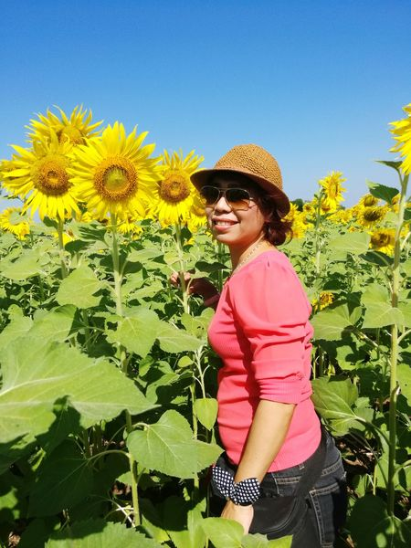 woman with the sunflower take the picture Human Connection Flower Clear Sky Smiling Young Women Standing Portrait Happiness Summer Tree Sunglasses Sunflower Sepal Blooming Osteospermum Fragility Cosmos Flower Dahlia Passion Flower Periwinkle Hibiscus Hydrangea Single Flower Petal Sun Hat Flower Head Pollen In Bloom Hot Air Balloon Growing