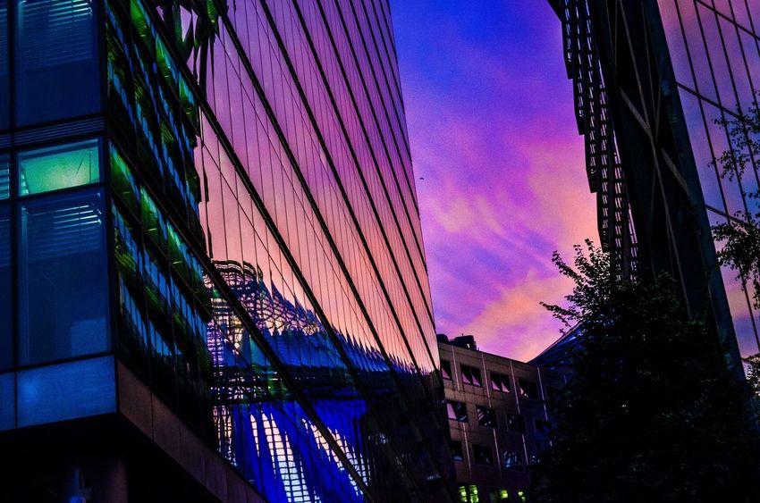 The Architect - 2016 EyeEm Awards Berlin Berlin Photography Postdamer Platz From My Point Of View Architecture Architecture_collection Reflection Glass Sunset Sky Sky_collection EyeEm EyeEm Best Shots EyeEm Best Shots - Sunsets + Sunrise