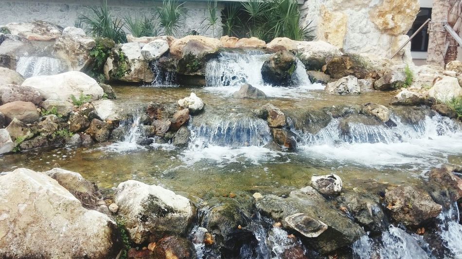 Boyfriend wanted to go to Bass Pro Shop to shop. I took pictures. Bass Pro Shop! Tampa Christmas Time Christmas Shopping Day Out With The Boyfriend Waterfall Fountain Outdoor Photography Water Feature Wish It Were At My House Rocks