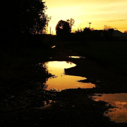 EyeEm Selects Tree Sunset Silhouette Water Reflection Sky