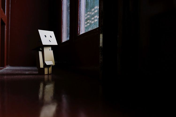 Lonely days. Danbo Danboard Feeling Lonely Toy Natural Light Toys Character Window Low Light Selective Focus Portrait Moment Sad Natural Light Portrait Anime Japanese  Green Shadow The Still Life Photographer - 2018 EyeEm Awards
