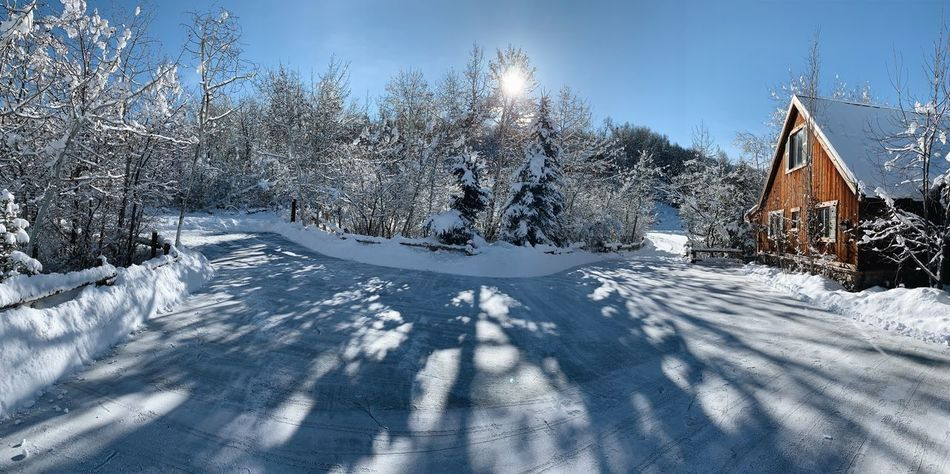 had a few good dig outs this past weekend. ❄️🏔 Iphonexs Wasatch Mountains Wasatch Back Wasatch County Utah Cold Temperature Snow Winter Nature Plant Tree Sky