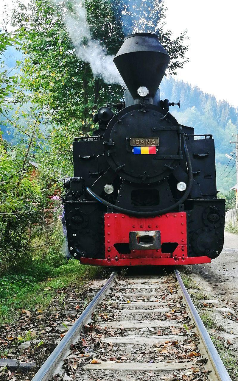 rail transportation, railroad track, transportation, train - vehicle, steam train, locomotive, mode of transport, public transportation, day, outdoors, no people, tree
