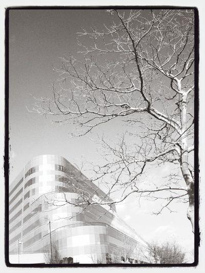 Structure Urban