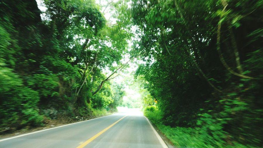 Nature Shot Green Hart Road Trip Backpacker