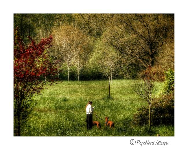 Nature Photography Asturias Paraiso Natural🌿🌼🌊🌞 Outdoors Poladesiero Nature Grass Relaxing Moments Dogs Outdoor Photography