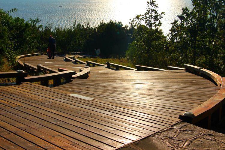 葫芦岛 Sunlight Growth Boardwalk Sunny The Way Forward Tranquility Outdoors Curve Sky Day Tree Sea Beach Tourism Water Clear Sky LIAONING辽宁 CHINA中国 Nature Green