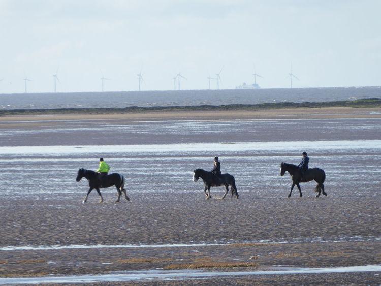 Longlens Lowtide  Irishsea Horseriding Windfarm Estuary