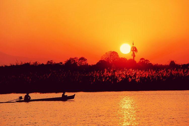 Sunser EyeEmNewHere EyeEm Nature Lover Bird Tree Water Sunset Flamingo Lake Silhouette Sun Orange Color Red