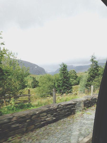 Through The Window Ontheroad Daytime Day Out Dayout Day Sunnyday Holiday Holidays Holiday♡ Wales Wales❤ Sunnyday☀️ Sunny☀ Eeyemphotos Eeyem Travelling Travel Photography EyeEm Masterclass Eeyemgallery EyeEm EeYem Best Shots Eeyem Photography EyeEmBestPics EyeEm Best Shots