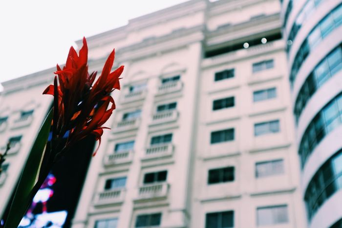 Red Architecture Outdoors Streetphotography Canon Eosm10 Eastwood City Building People And Places City I❤ph