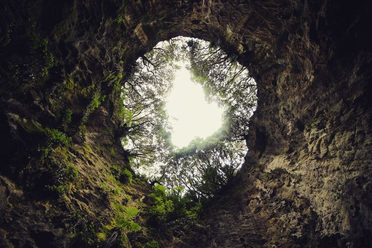 Blowhole Sky Cave Nature Photography Nature_collection Tree Outdoors Plant Nature No People Day Architecture Window Tranquility First Eyeem Photo