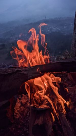 Close-up of fire burning on wood
