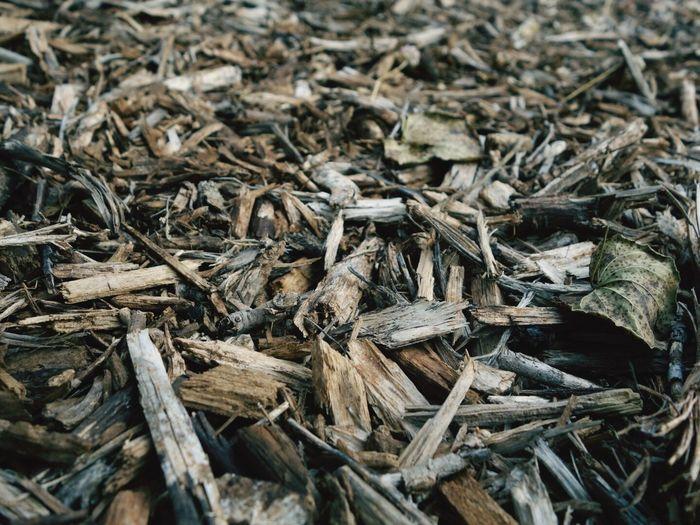 Full Frame Shot Of Driftwood