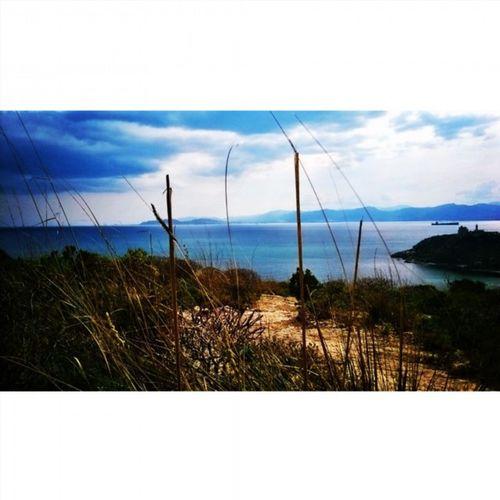 Calamosca Cagliari Loves_cagliari Sea Sky Clouds Nature Amazing Loves_sardegna Instasardegna Igerscagliari Beautiful Igersardegna Instalike Instadaily Bestoftheday Sardiniaphotos Volgocagliari Igfriends_italy Igfriends_sardegna Sardiniaexperience Sardolicesimo Sardegna Nofilter Instagood instagramsardegna fotografi_amo all_shots volgoitalia ig_perlas