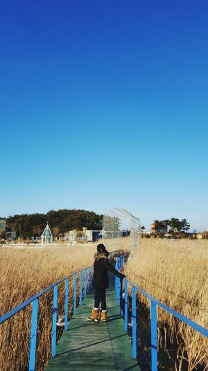 Woman standing on boardwalk amidst field against sky