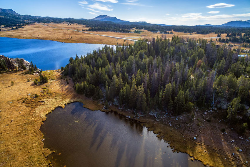 Aerial view of lakes and trees in Shoshone National Forest in Wyoming Alpine Bear Montana National Park Scenic Shoshone Travel Tundra USA Wanderlust Wyoming Beartooth Destination Forest Lake Landscape Mountain Overlook Peaks Range Scenics Shoshone National Forest Tooth Valley Wilderness