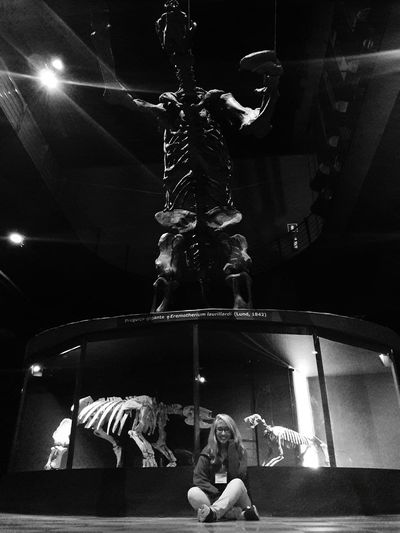 Giant sloth. Arts Culture And Entertainment One Person People Museum Museu Pleistocene Paleontology