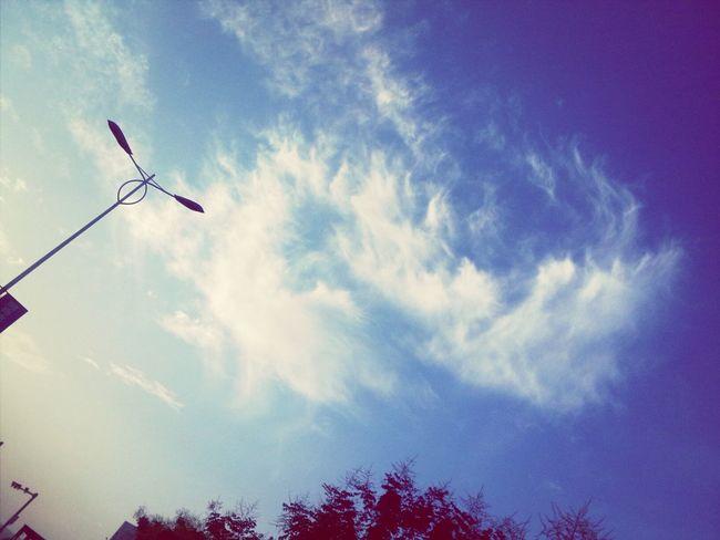 有风的日子里天空总是格外的蓝。 Taking Photos